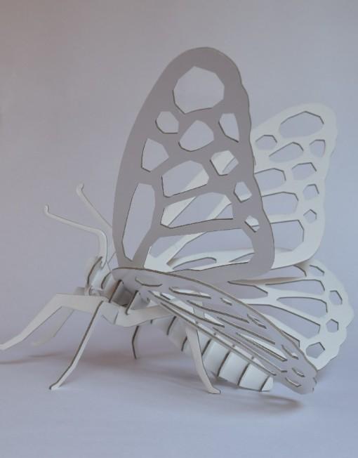 mariposa 1 900x900